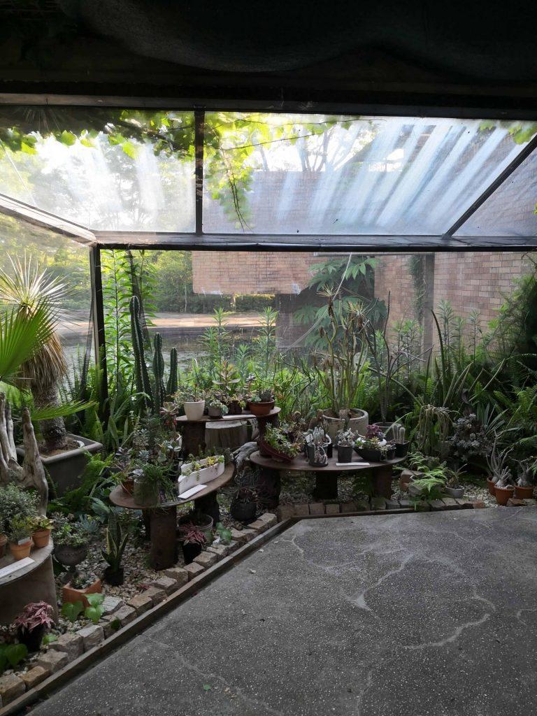 須磨離宮公園の温室の窓